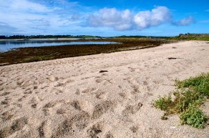 Tresco from St Martin jpg